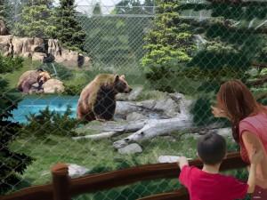 pgav destinations designing new big bear alpine zoo